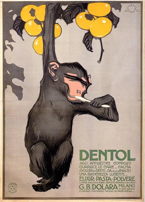 Risultati immagini per dentol scimmia